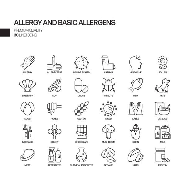 Simple Set of Allergy and Basic Allergens Related Vector Line Icons. Outline Symbol Collection Simple Set of Allergy and Basic Allergens Related Vector Line Icons. Outline Symbol Collection immunology stock illustrations