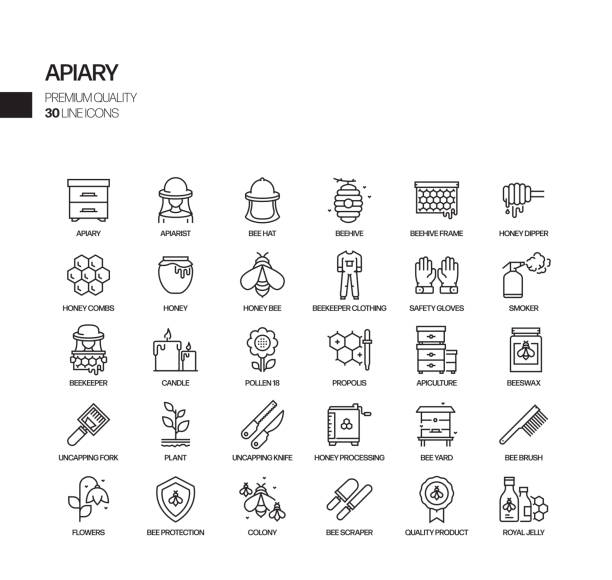 illustrazioni stock, clip art, cartoni animati e icone di tendenza di simple set of apiary related vector line icons. outline symbol collection. - impollinazione