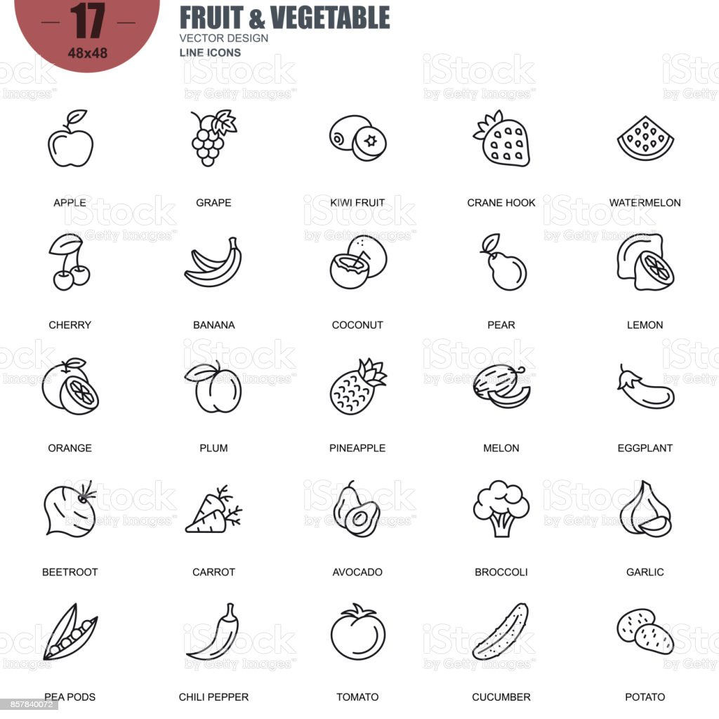 Simple set of fruit and vegetable related vector line icons vector art illustration