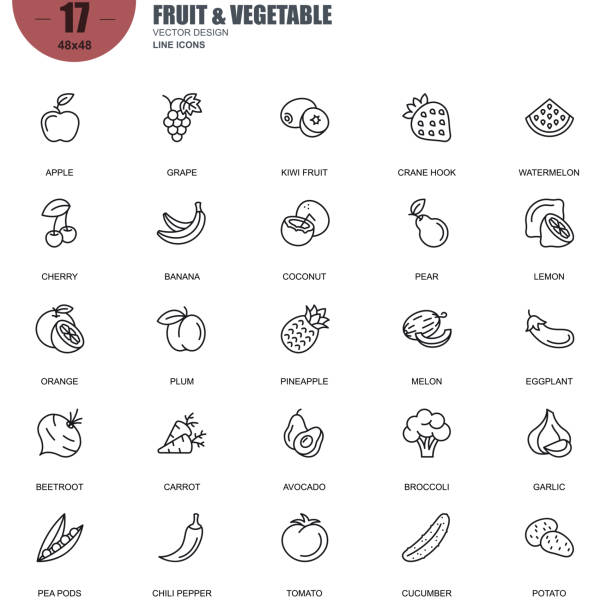 illustrazioni stock, clip art, cartoni animati e icone di tendenza di simple set of fruit and vegetable related vector line icons - avocado
