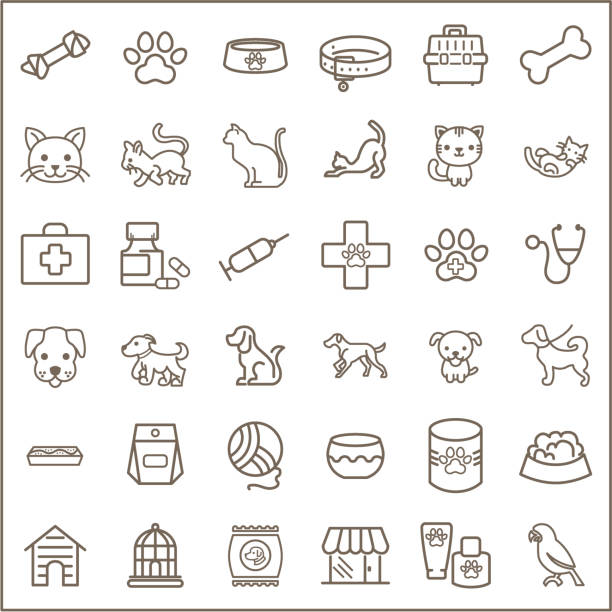 simple set of pet related line icons. - pets and animals stock illustrations