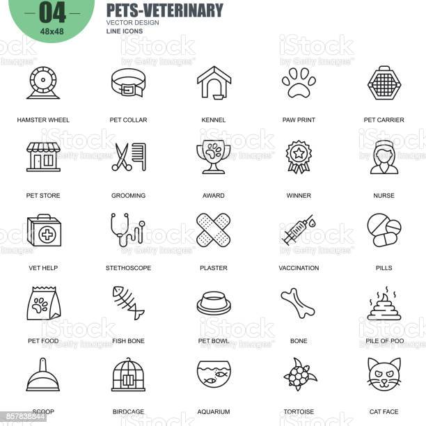 Simple set of pets and veterinary vector line icons vector id857838844?b=1&k=6&m=857838844&s=612x612&h=rz kwaqpe7tzqgmkw5zvw07qifggdpoe82pyqwp1rli=