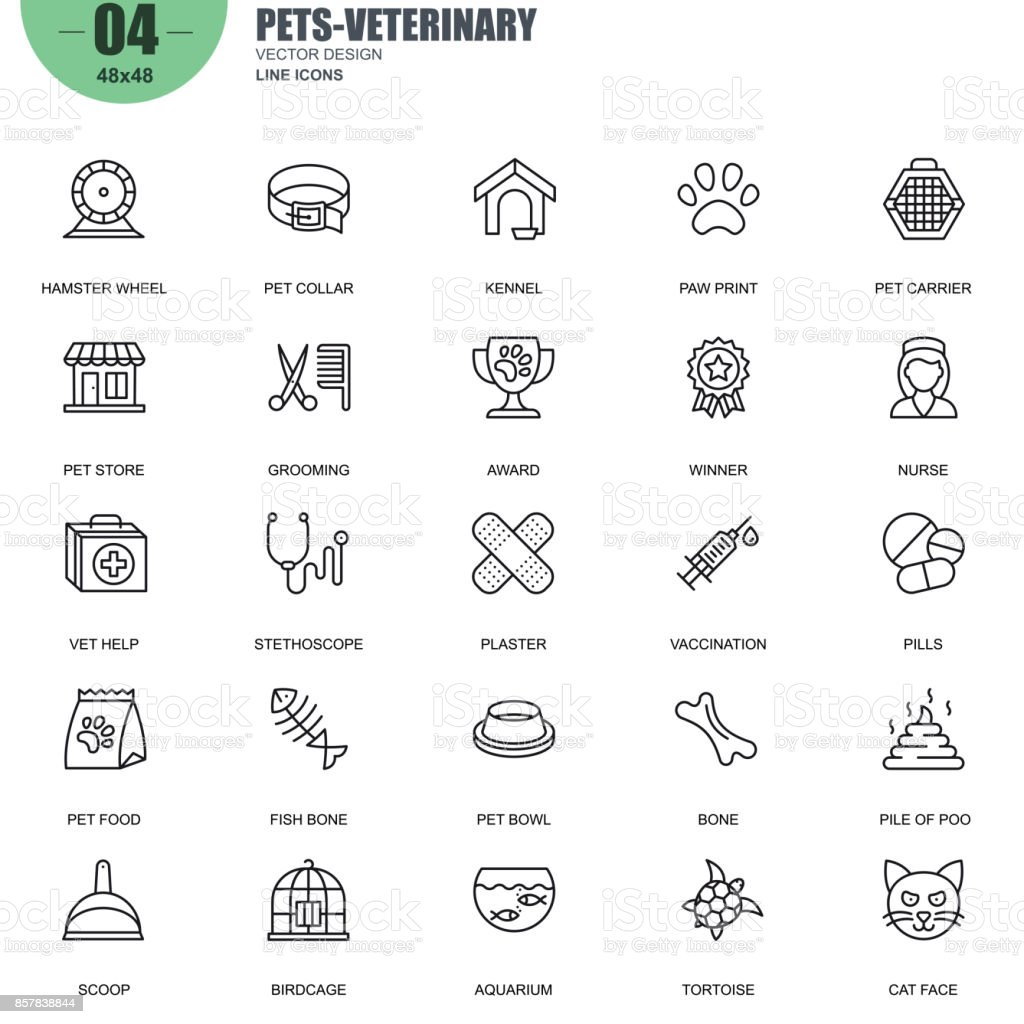 Simple set of pets and veterinary vector line icons vector art illustration
