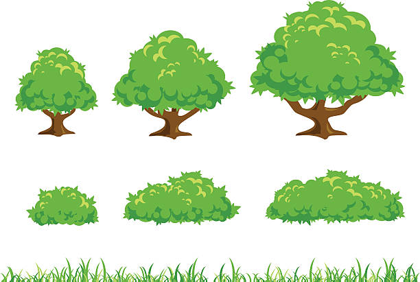 Simple arbre et brousse Illustration - Illustration vectorielle