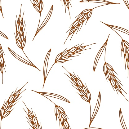 Simple vector seamless pattern. Dark brown contour of spikelet of wheat, cereal crops, growing organic plants, seasonal harvest. Food, bread, flour. For printing textile products, labels, packaging.