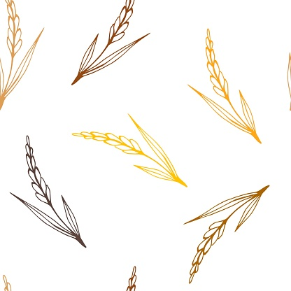 Simple vector seamless pattern. Golden spikelet of wheat, brown outline of crops, growing organic plants, seasonal harvest. Food, bread, flour. For printing textile products, labels, packaging.