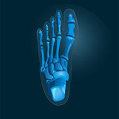 Simple x-ray picture of foot in blue colors. Vector. X-ray foot vector icon