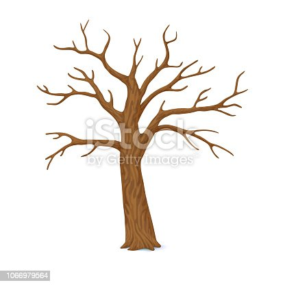 Vector illustration. Winter, late autumn icon. Single bare, leafless tree with empty branches isolated on a white background.