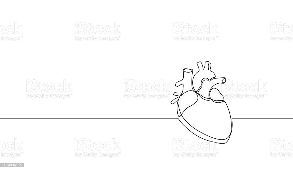 Single Continuous Line Art Anatomical Human Heart Silhouette Healthy ...