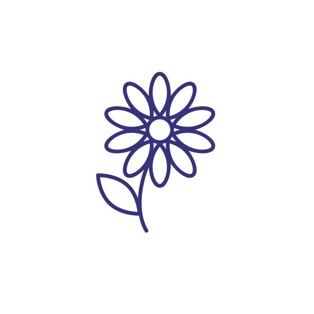 Single flower line icon Single flower line icon. Gerber, petals, decoration. Spring concept. Vector illustration can be used for topics like garden, flora, nature daisy stock illustrations