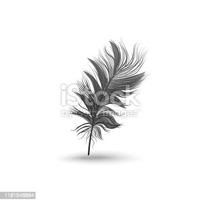 Single fluffy black feather falling or hovering upright realistic style, vector illustration isolated on white background. One dark soft bird feather floating above surface and its shadow