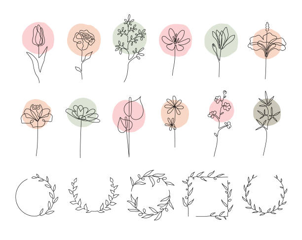 Single line flowers set Collection of flowers and wreaths made with continuous line drawing. Editable vectors on layers. flowers stock illustrations