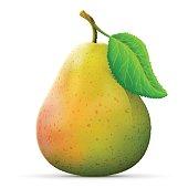 istock Single pear fruit close up 657848088