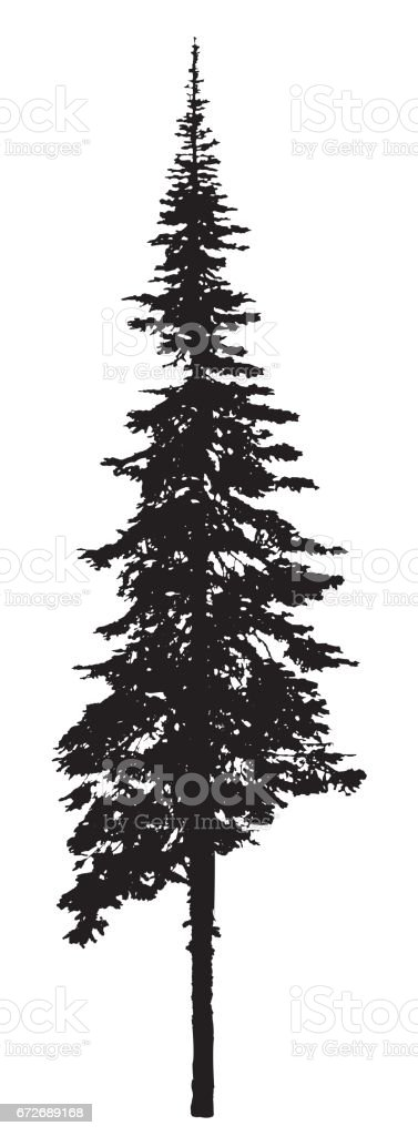 Single Pine Tree Silhouette Stock Vector Art & More Images ...