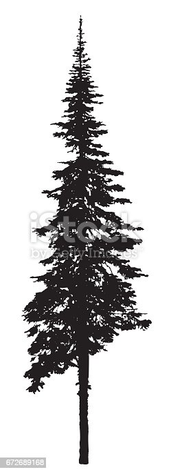 A vector silhouette illustration of a pine tree with roots showing.