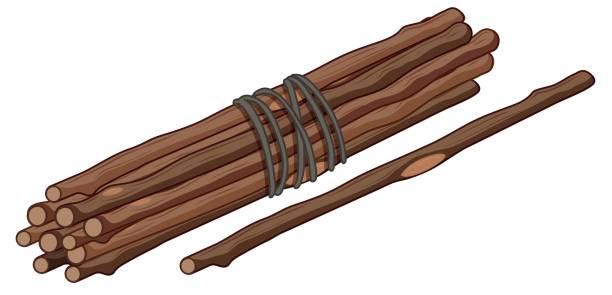 Single stick and bunch of sticks Single stick and bunch of sticks illustration bundle stock illustrations