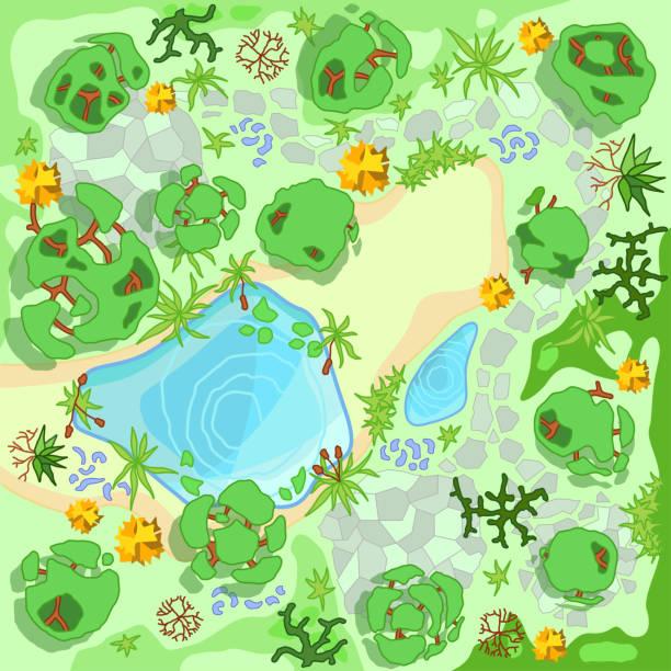森林の中のサイト改善風景や観光キャンプ。(上のビュー)池、石、木、植物、湖、ビーチ。(上から見た)。地形設計。ベクトルイラスト。 - 森林 俯瞰点のイラスト素材/クリップアート素材/マンガ素材/アイコン素材