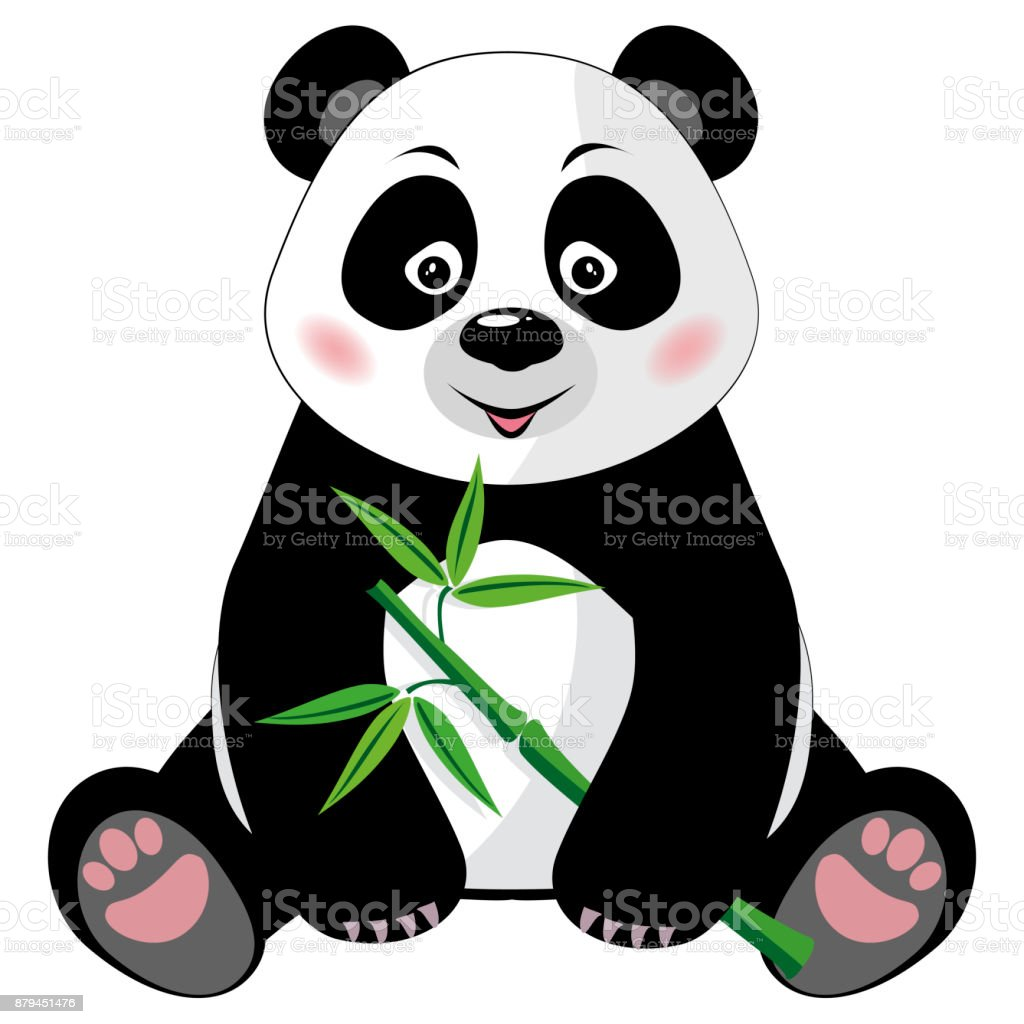 Sitting cute panda with bamboo isolated on white background vector art illustration