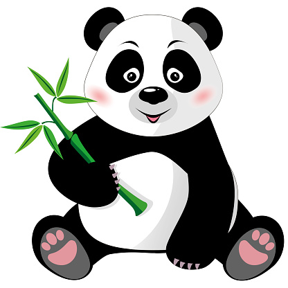 Sitting cute panda with bamboo isolated on white