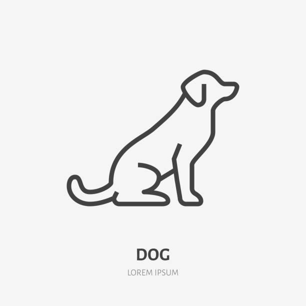 illustrazioni stock, clip art, cartoni animati e icone di tendenza di sitting dog flat line icon. vector thin sign of black puppy, animal logo. pet shop outline illustration - retriever
