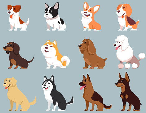 Sitting dogs of different breeds.