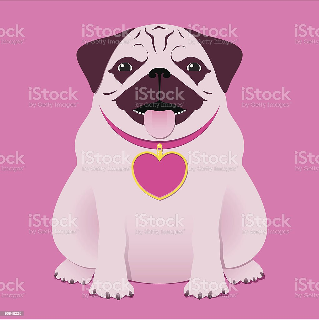 Sitting pug/boxer with pink heart necklace royalty-free sitting pugboxer with pink heart necklace stock vector art & more images of animal