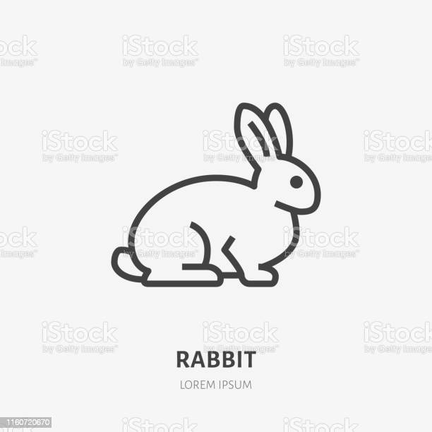 Sitting rabbit flat line icon vector thin sign of cute bunny animal vector id1160720670?b=1&k=6&m=1160720670&s=612x612&h=zrewfun5fcb7cmh8hxcjkz3q3cb mob6fdjpn4mizs0=