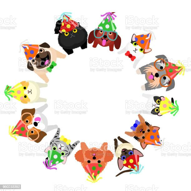 Sitting small dogs and cats with party hats looking up circle vector id950233352?b=1&k=6&m=950233352&s=612x612&h=dc3djtqm9ruvhhqibps6uwhe l4fqkbbrg2u9bv afs=