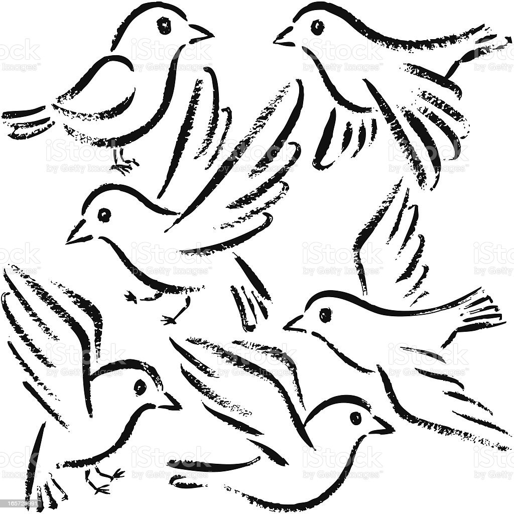 Six Birds vector art illustration