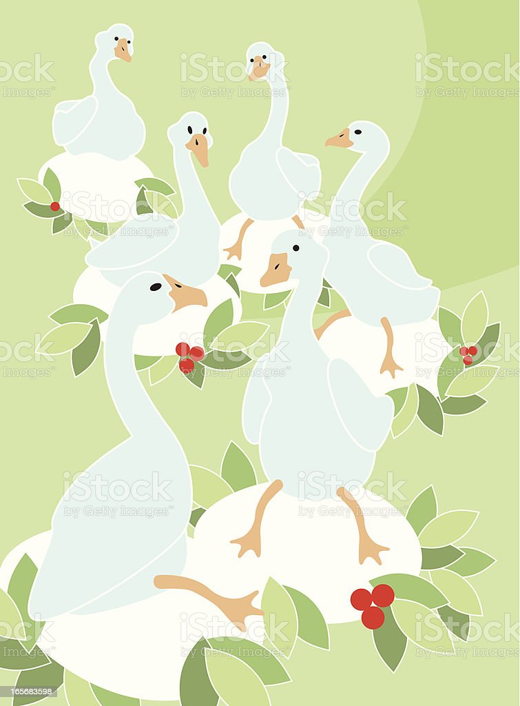 Six Geese A-Laying vector art illustration