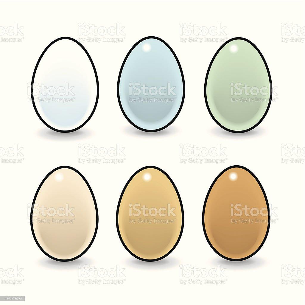 Six Natural Eggs vector art illustration