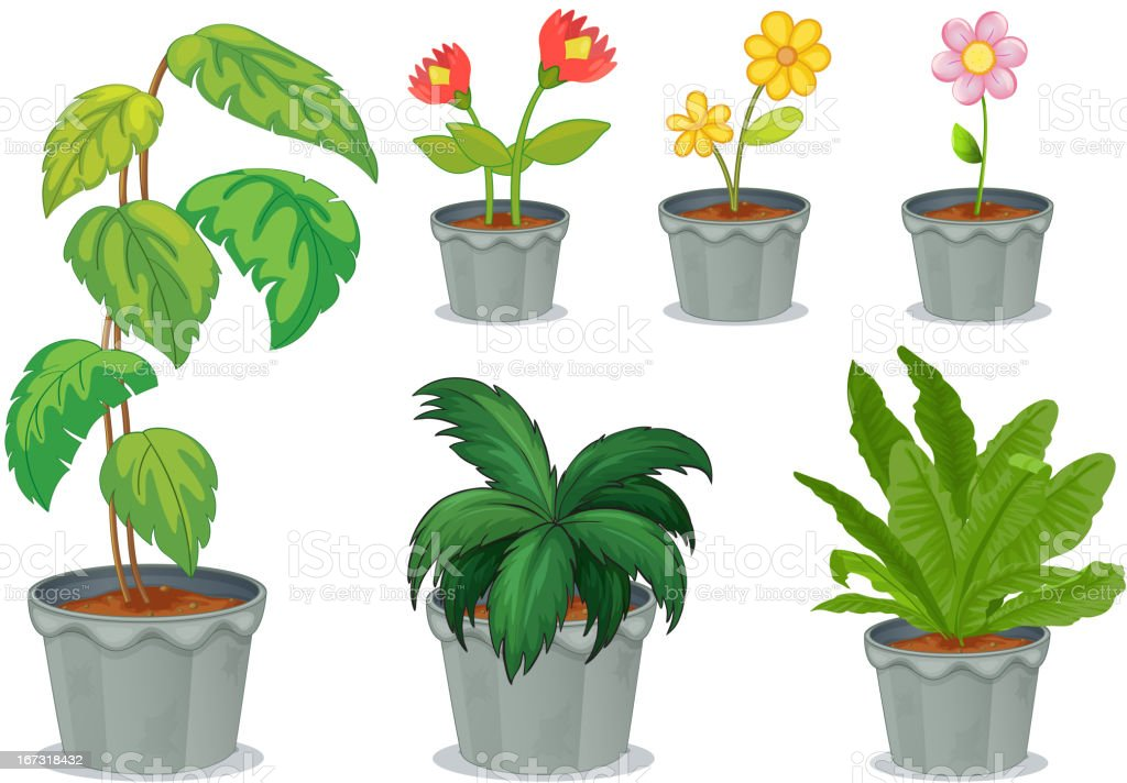 Six pots with plants royalty-free six pots with plants stock vector art & more images of clip art