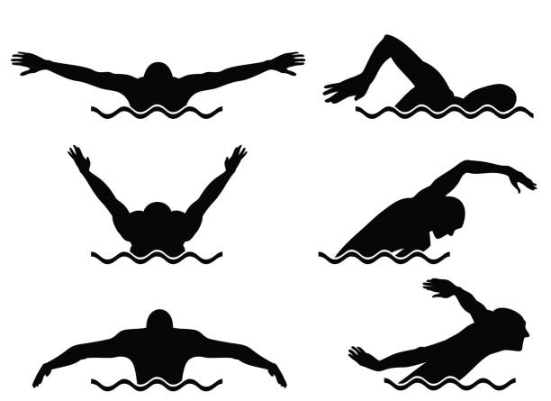 ilustraciones, imágenes clip art, dibujos animados e iconos de stock de seis nadadores fijan - natación