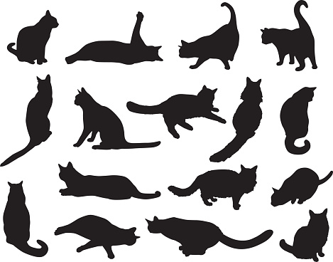 Sixteen cat Silhouettes