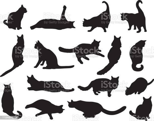 Sixteen cat silhouettes vector id1154670706?b=1&k=6&m=1154670706&s=612x612&h=ruli va0u4x6x8xrzvfbxlnimjjx7phrgqftjvz qqa=