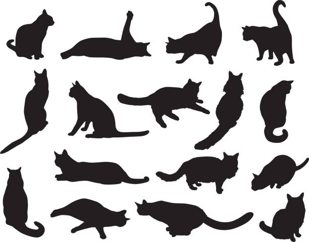 sixteen cat silhouettes - cat stock illustrations