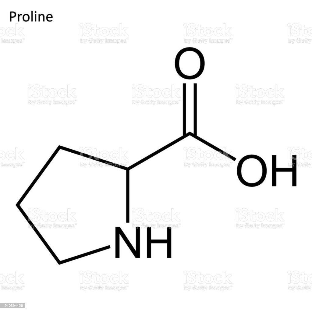 プロリンの骨格式 - たんぱく質...