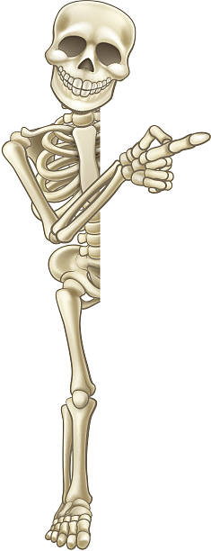 skeleton cartoon pointing at sign - chiropraktiker stock-grafiken, -clipart, -cartoons und -symbole