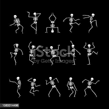 Human skeletons in different poses