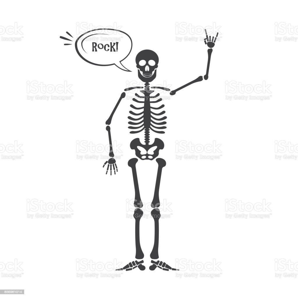 Ilustración de Esqueleto Humano Anatomía y más banco de imágenes de ...