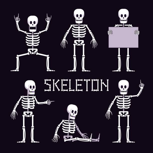 Bекторная иллюстрация Skeleton in various poses is cartoon style
