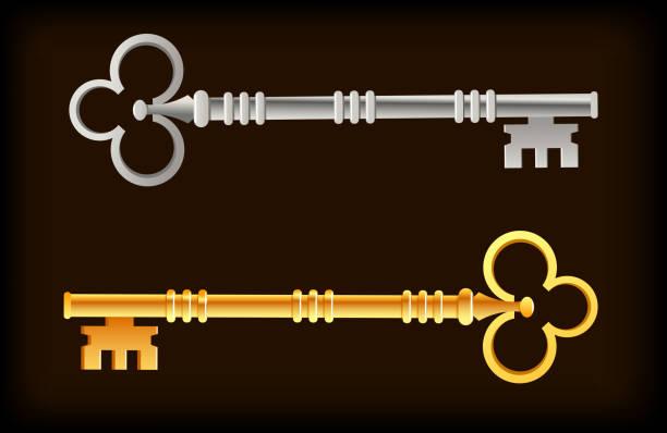 Skelett Schlüssel Gold Silber – Vektorgrafik