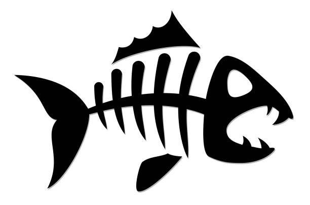 skeleton of fish. - fish skeleton stock illustrations, clip art, cartoons, & icons