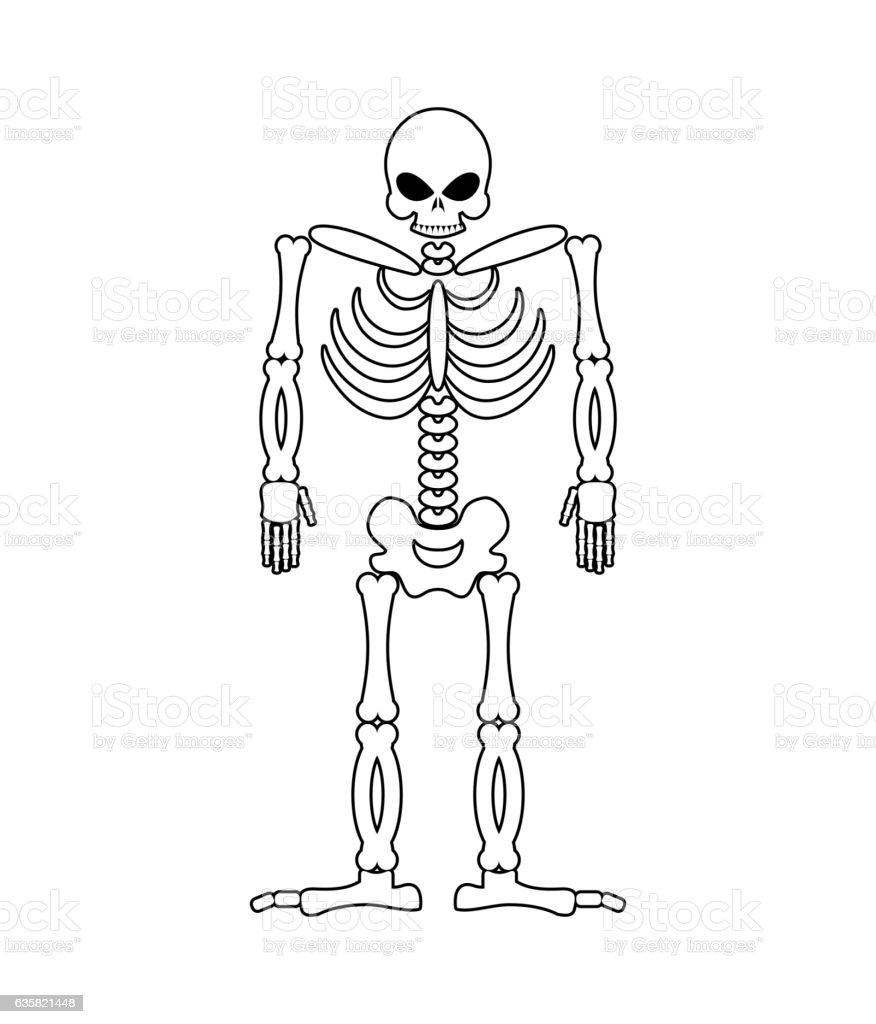 Beste Beckenbereich Anatomie Ideen - Anatomie Ideen - finotti.info