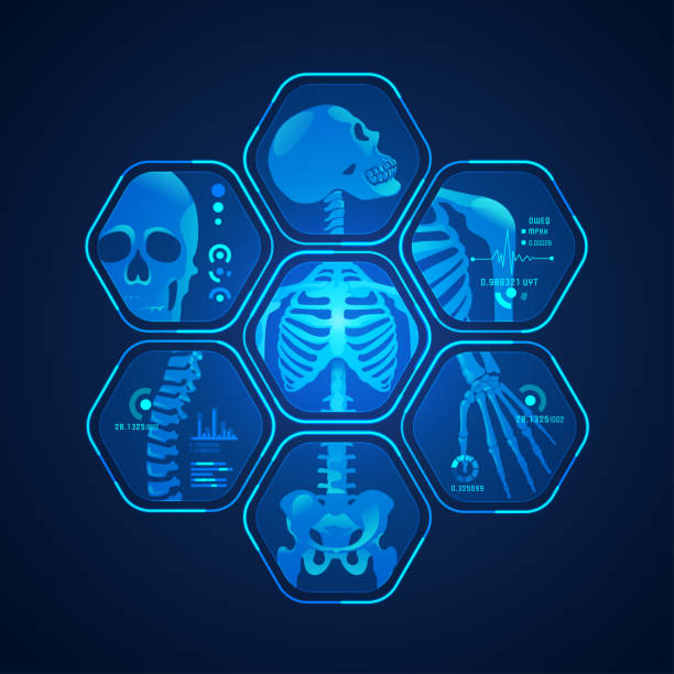 skeleton scan concept of science tehnology advencement, graphic of body scan with skeleton x-ray radiology stock illustrations