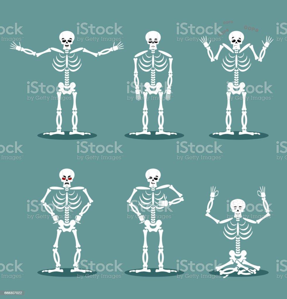 Skelett Satz Von Verschiedenen Posen Ausdruck Der Toten Emotionen ...