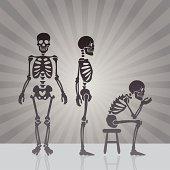 Skeleton Views