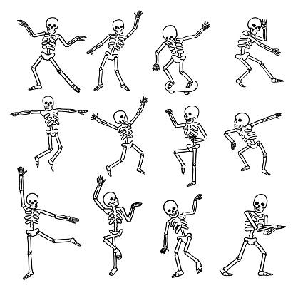 Skeletons Poses