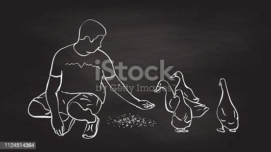 Teenage boy feeding the ducks with his hand