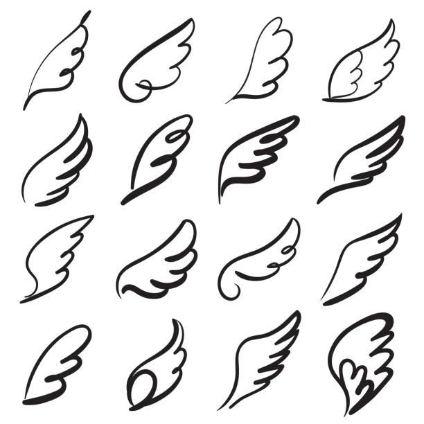 illustrations, cliparts, dessins animés et icônes de croquis d'ailes d'ange. aile de plume d'ange, silhouette de tatouage oiseau. mouche linéaire ailes anges, ciel dessiné à la main doodle icônes vectorielles - aile d'animal